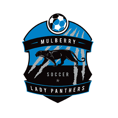 mulberry panthers soccer badge design